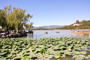 Vue lac 1