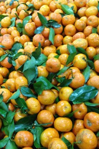 17-mini mandarines