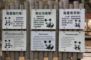 06_pédagogie pandas