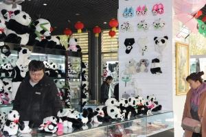 07_merchandising pandas