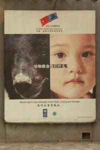 03-affiche bébé fille