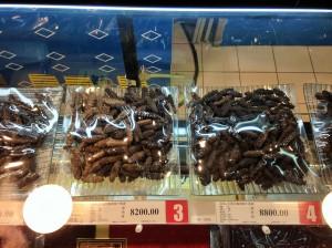 14-Concombre de mer