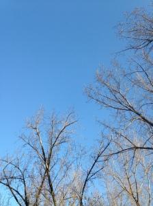 05.ciel bleu2