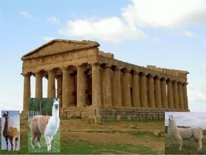4-01-Temple des Lamas