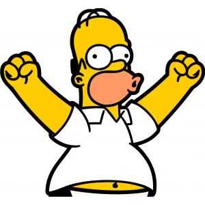 02-Homer victoire