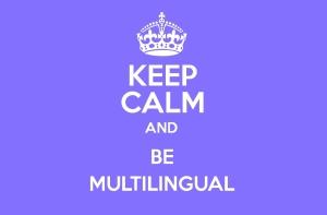 02-multi-langues
